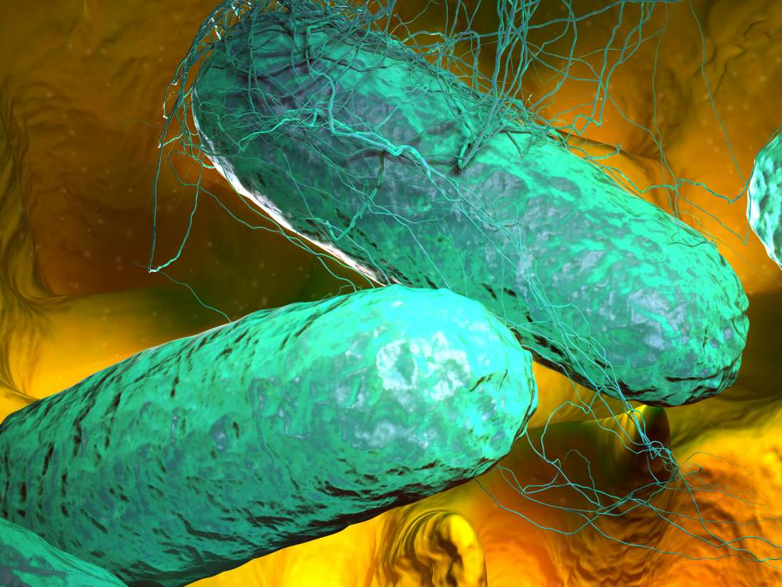 Mareos por infeccion intestinal