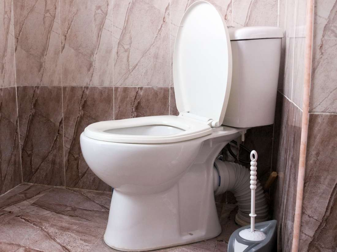 Superb 8 Causes Of Foul Smelling Stool Alphanode Cool Chair Designs And Ideas Alphanodeonline