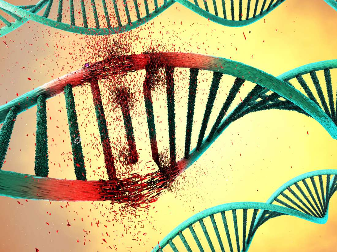 Genetic Mutation May Cause Early Onset >> Genetics News From Medical News Today