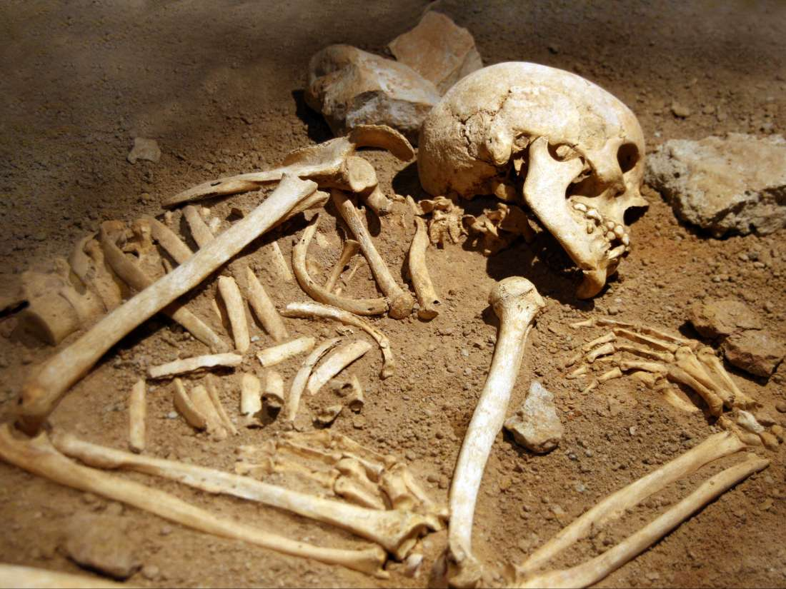 Human bodies can move on their own after death, study finds