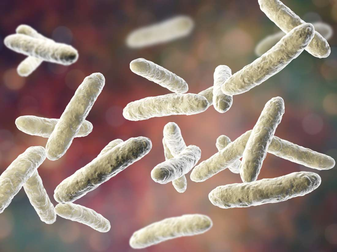 Even 'dead,' this probiotic may be effective against inflammation
